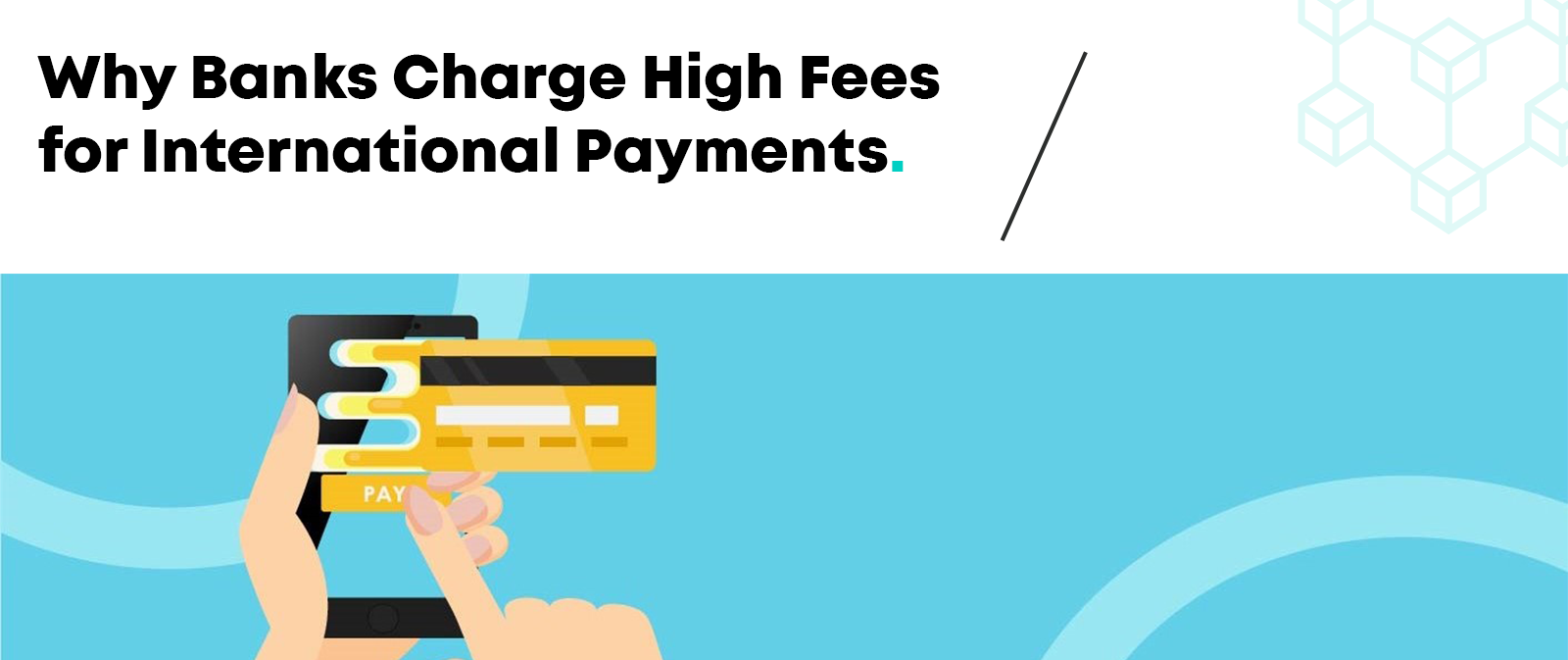 DTransfer Blog - Why Banks Charge High Commissions for International Payments